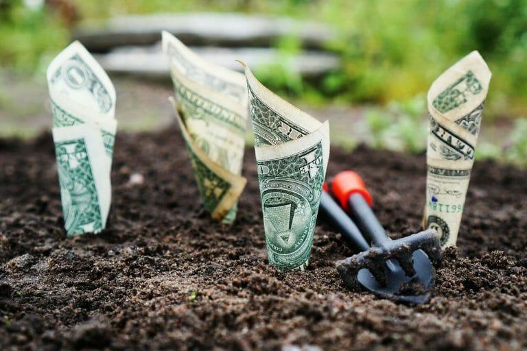 Este artículo habla sobre cómo ahorrar dinero. La imagen es acorde.